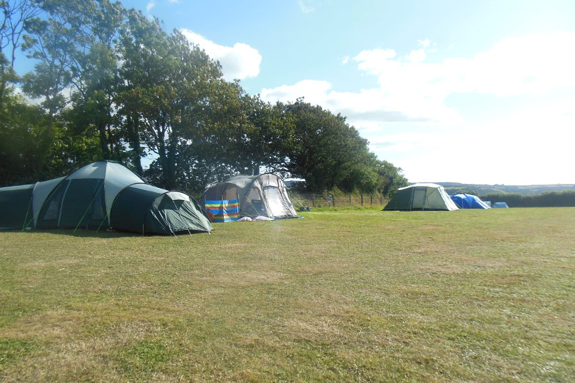 Holsome Park Campers tents pitched on a sunny day